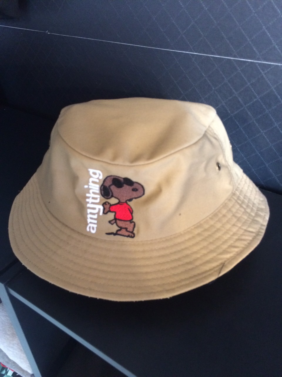 anything_hat01